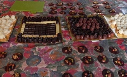 exemple_choco_stage1_m
